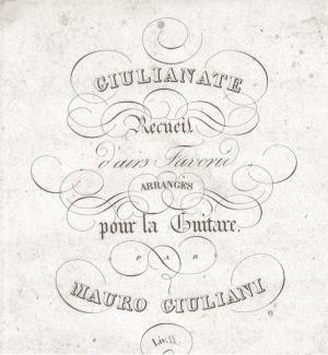 La musica del primo Ottocento e i suoi strumenti